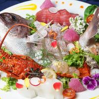 【水の国、わかやま。】【魚好き必見!】南紀の海を大皿で楽しむ♪活伊勢海老×勝浦まぐろ×鯛姿×サザエ