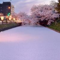 春爛漫★東北屈指の桜の名所「弘前城」は車で約60分♪花をめぐる旅はいかが?夕食はハーフバイキング★
