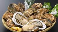 【冬期間限定】松島といえば牡蠣!「冬の味覚牡蠣プラン」
