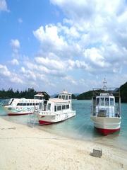 さんご礁を探検!川平湾グラスボートプラン