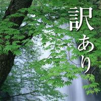 【訳あり】超特価!休館日前日の宿泊でいつもよりお得に♪お風呂付のお部屋が9720円!
