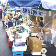 【夕食付】海鮮に舌鼓♪勝浦朝市を満喫