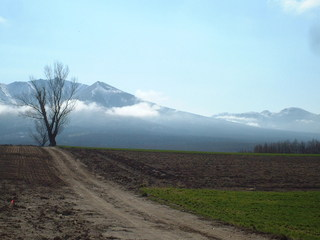 ★1泊朝食付★これぞ北海道!雄大な十勝岳連峰と畑の緑が美しい春から秋のプラン♪