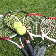 ◎【テニスコート1時間無料】手ぶらでOK!☆ラケット&ボールレンタル付☆高原でテニスプラン★2食付