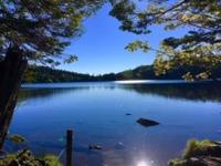 【北八ヶ岳・山歩きプラン】標高2100mの原生林と苔の森の白駒池・白樺の群生林/ご希望者におにぎりも