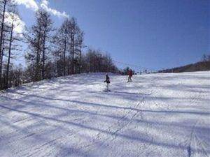 【お先でスノ。】すべっ得・雪質最高!スキー&スノボープラン!ゲレンデ徒歩2分/リフト券割引と温泉割引
