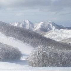 【1泊2食 リフト1日券付】竜山・上の台ゲレンデまで徒歩5分好立地♪ [お先でスノ。スキー]