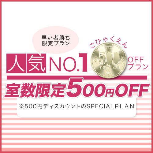【通常より500円OFF】お得な500円割引特別プラン! ※部屋数限定