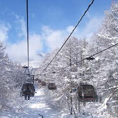 ファットスキーで滑るパウダー体験★スキー半日コース 2食付 宿泊プラン