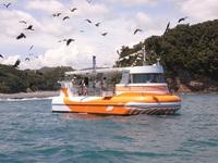 色鮮やかなサンゴ礁や熱帯魚を満喫♪水中観光船乗船券付きプラン 朝食付き