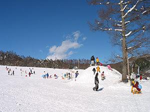 【お先でスノ。】HAKUBAVALLEY 爺ヶ岳スキー場リフト券付スキープラン