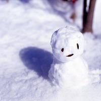 【冬季◆1泊2食付】リフト券割引購入OK♪選べる4つのスキー場!