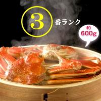 毎年【1番人気】の安定サイズ【3番】極上越前かにフルコース★タグ付ゆで蟹1匹(約600g)