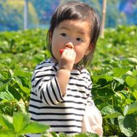 【春旅】甘〜いね★まっ赤なイチゴにお子様ニッコニコ!《イチゴ狩り食べ放題プラン》で想い出家族旅行♪
