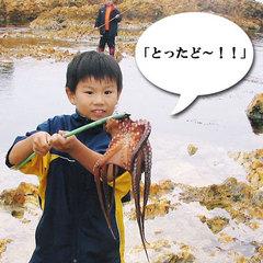【伝統漁法体験】「とったど〜!」お子様大はしゃぎ!能登の秋の風物詩たこすかし漁と採れたて新鮮蛸を食す