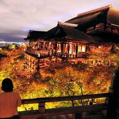 【秋グルメ】【部屋食】◆京料理×旬の松茸◆うっとりする香りに酔いしれる京都の味覚≪松茸≫を堪能する。