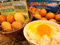 【朝食付】シングル≪クチコミ投稿で楽天スーパーポイント2倍!≫お得なご朝食付きプラン