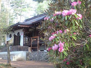 草津温泉の夏満喫 家族でのんびり貸切風呂 【現金特価】
