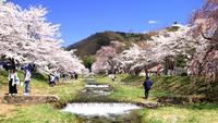 【春夏旅セール】【素泊まり】日本屈指の薬湯を源泉かけ流しで温泉三昧!最終チェックイン21時までOK☆