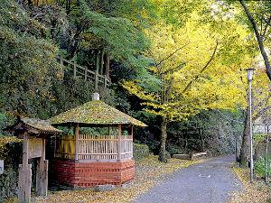 【早割★7】高松へビジネス・観光に予定が決まったらこのプラン≪朝食無料≫