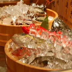 【2018年7月リニューアルOPEN!】※半露天風呂付客室!海鮮物語&旬の地魚チョイスプラン