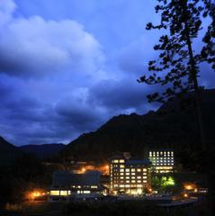 満天のスターウォッチングと夜のかずら橋ライトアップツアーへご案内☆ 極みプラン