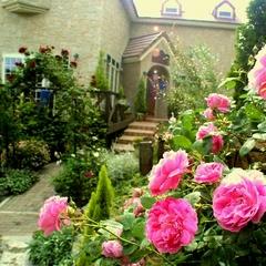 ★バラが咲き誇るクラリスガーデンへ★お花好きさん集まれ♪絶品フレンチ×ロゼスパークリング♪