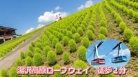 N10R 新緑の標高1000m高原へ!雲の上の空中散歩【湯沢高原ロープウェー往復チケット付】