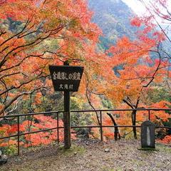 【紅葉】の秩父へ! 最高のシーズンを自然と共に過ごすのんびり時間♪ 旅のお供にフルーツ飴付♪