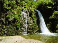 (*^_^*)お盆特別プラン♪山形の郷土料理と源泉掛け流しのお風呂で日頃の疲れを癒してください!