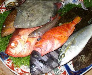 ★鮮魚盛り沢山★旬の鮮魚特別海彦会席プラン!【3名以上は船盛り対応可】