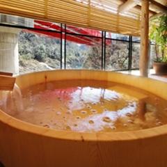 出張応援!【平日限定】Wi-Fi無料 渓谷の宿に籠って日々の疲れを温泉で♪素泊まりプラン