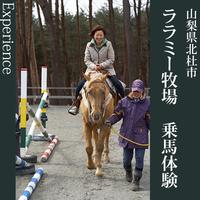 【体験プラン】乗馬発祥の地・小淵沢で乗馬体験30分!<香コース>1泊2食¥16800〜
