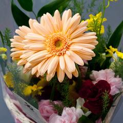 【早割30】誕生日は有馬温泉でバースデープラン〜お花にケーキご用意します〜