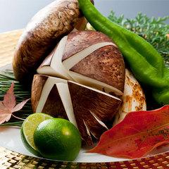 【秋の味覚】味も香りも贅沢に!「国内産松茸懐石」