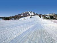 【お子様連れ必見】 子供半額プラン!! 家族でスキー&スノーボード☆