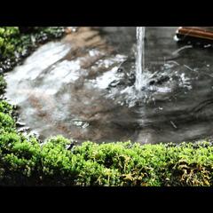 ◆素泊まりプラン◆源泉掛け流しの温泉でゆったり