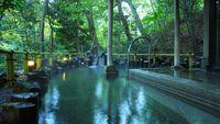 【通年プラン】■【受賞NO.1☆美肌の湯体感】緑あふれる露天風呂で自然を感じる♪いつでも天然温泉