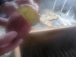 【黒川唯一の蒸し処が活躍】ホッカホカ蒸し野菜(おやつがわりに最適)のお土産付★プラン