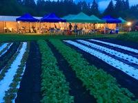 ミッフィー農園秋の収穫祭・1泊2食農園BBQプラン【お子様歓迎】
