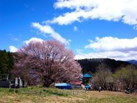【GW特集】新緑のかたしな高原・1泊2食プラン【お子様歓迎】