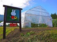 【GW特集】「ミッフィー農園収穫体験」付・1泊2食自然体験プラン【お子様歓迎】
