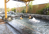 【春夏旅セール】【基本プラン】季節の和会席プラン【こころの湯入浴券付】