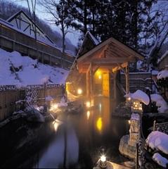 【お先でスノ。】<リフト券付★2食付コース>スキー!スノボ!雪見の貸切露天風呂!冬をまるごと満喫!