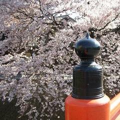 【1泊朝食付】日本庭園を見ながらゆっくりと朝食を♪