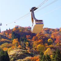 【湯沢高原アルプの里ロープウェイ乗車券付】世界最大級のロープウェイで空の高原へ♪