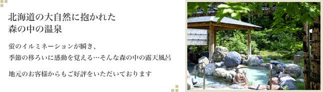 北海道の大自然に抱かれた森の中の温泉