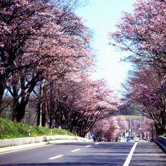 【お子様み〜んな550円】<バイキング>低層階だからオトク★GO!GO!春のドライブプラン