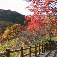 【おひとりさま歓迎】<バイキング>ひとり旅&ビジネスユースに♪鬼sキッチン☆秋の旬感バイキング