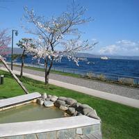 【学生限定】<バイキング>部屋飲みセット&飲み放題60分付☆春の温泉旅プラン